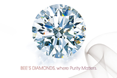 Bee's Diamonds - Investment