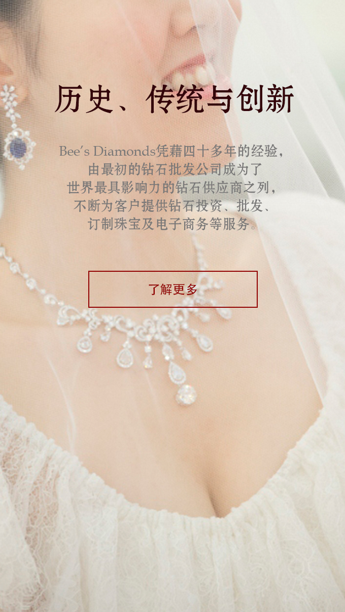 Bee's Diamonds | 钻石历史